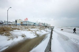 Snowstorm in Rehoboth
